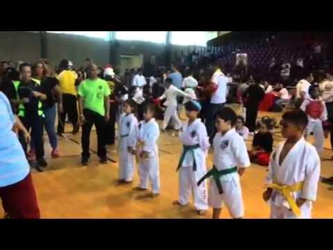 Sensei Medina Grand Champion Kata 7& under