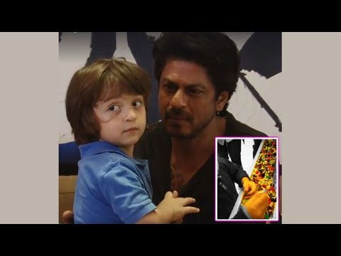 Super Cute Abram Khan Questioning Father Shah Rukh Khan | You Will Fall In Love