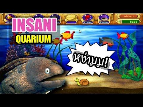 เกมส์เลี้ยงปลาในตำนาน - Insaniquarium (เกมส์เก่า)