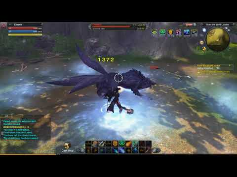 Wild RaiderZ - HH Quest
