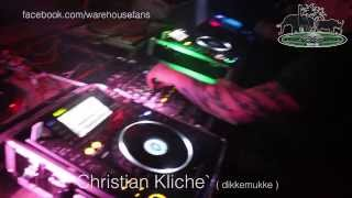 Silvester 2013 - Warehouse Animal Floor - Cristian Kliche -