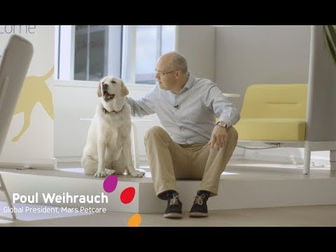 Take Your Dog to Work at Mars Petcare