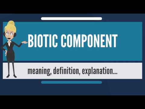 What is BIOTIC COMPONENT? What does BIOTIC COMPONENT mean? BIOTIC COMPONENT meaning & explanation