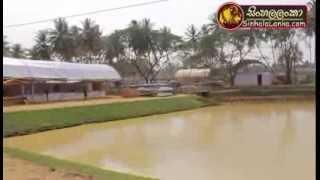 Kuliyapitiya Deyata Kirula National Development Program 2014 02 19