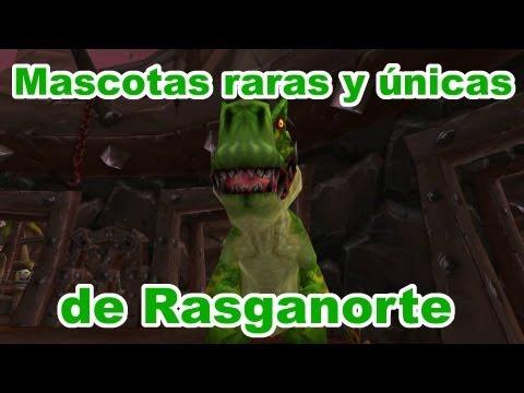 Mascotas de cazador #10 Raras y únicas de Rasganorte.