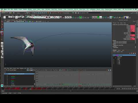 Animation Rig: Forster's Tern