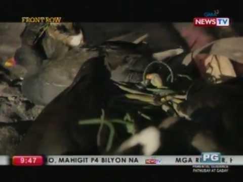 Front Row: Bakit nga ba nanghuhuli ng mga ibon ang mga 'bird hunters' kahit illegal ito?