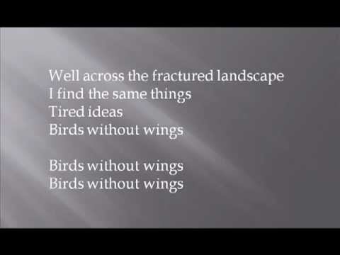 David Gray - Birds Without Wings (A Century Ends, 1993).mp4