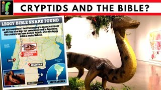 Cryptids from the Bible. The Discovery of a snake with legs