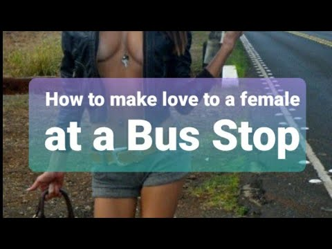 How to Make Love to a Female at a Bus Stop