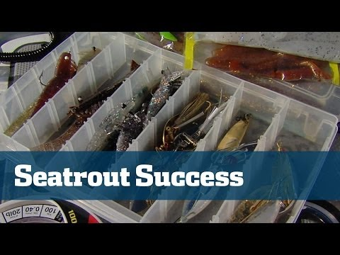 Tips And Tricks For Finding And Catching More Seatrout Across Florida - Florida Sport Fishing TV