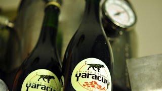 Emprendedor - Cerveza Artesanal Yaracuy