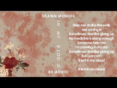 Shawn Mendes - In My Blood | Lyric Video | 8D Audio || Dawn of Music ||