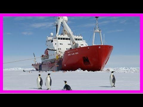 Breaking News | When the larsen c ice shelf broke, it exposed a hidden world