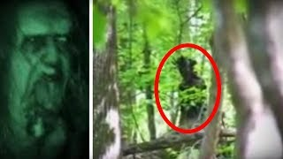 5 Terrifying FOREST CREATURES Caught on Camera