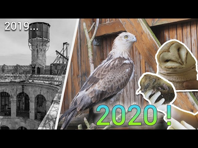 Bilan 2019 et projets 2020