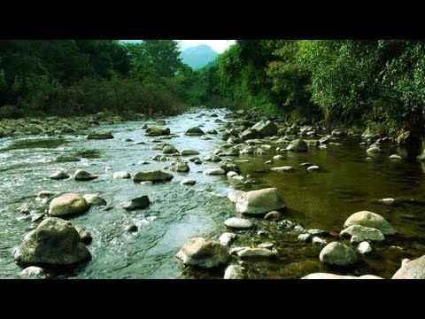Bhavani River in Attappady, Palakkad