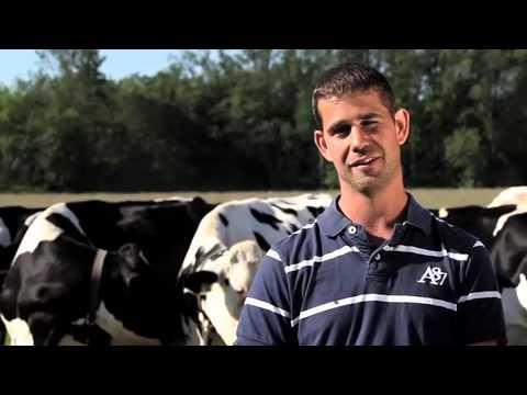 Happy Cows, Happy Milk - Organic Meadow