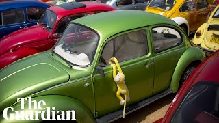 'It's about identifying with something': a brief history of the VW Beetle thumbnail