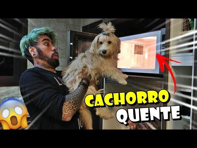 CACHORRO QUENTE CASEIRO (FICOU BOM ?)