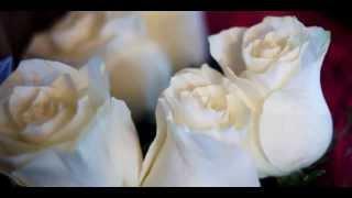 Свадебный клип Илья и Катя