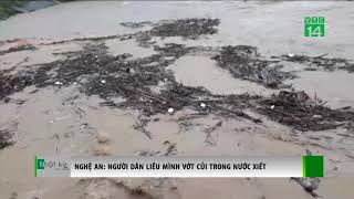 Nghệ An: Người dân liều mình vớt củi trong nước xiết | VTC14