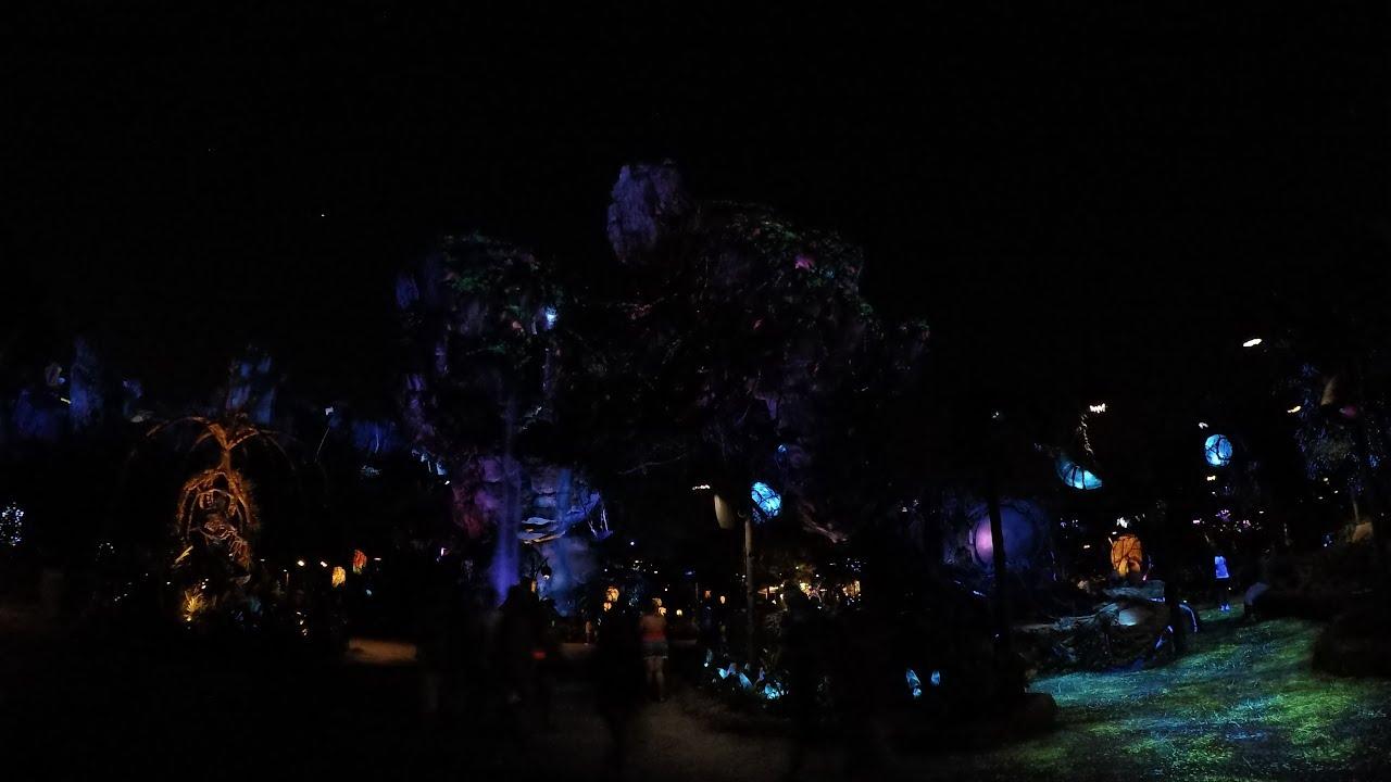 4K Pandora Land Of Avatar Full Night Time Walkthrough At Disneys Animal Kingdom