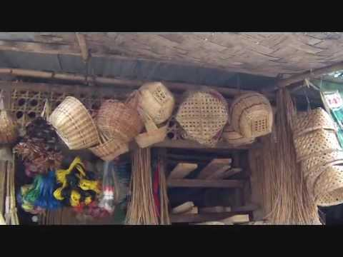 Most Of The Bamboo On Bohol Comes From Our Area An Expat Philippines Foreigner Lifestyles Video