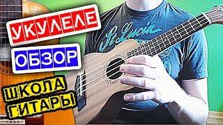 Обзор УКУЛЕЛЕ с АлиЭкспресс 🎸 Школа гитары