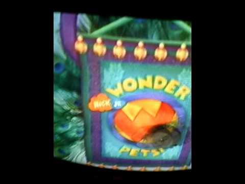 Wonder pets theme song