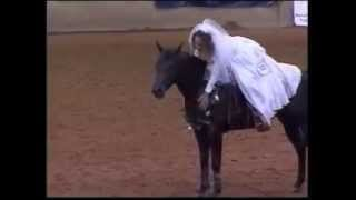 Gambar cover Stacy Westfall and Whizards Baby Doll 2005 Reining Freestyle Champion