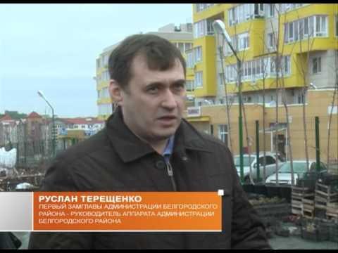 Уровень зарплат в Белгородском районе