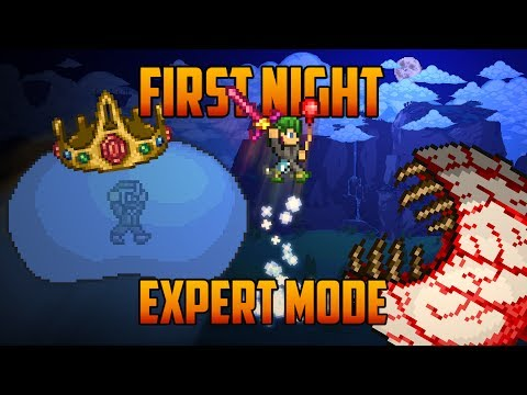Terraria - Expert King Slime & Eye of Cthulhu on the First Night [Speedrun Challenge]