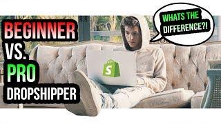 BEGINNER vs. PRO DROPSHIPPERS
