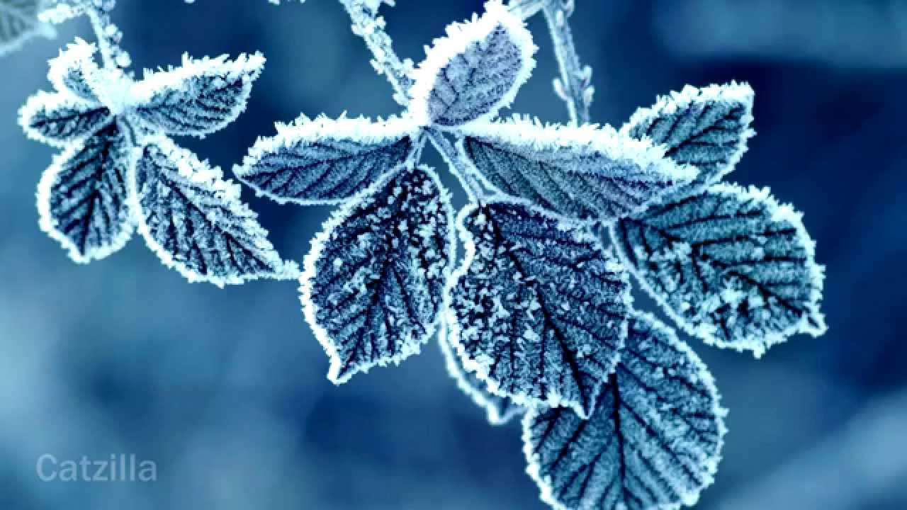 Winter HD Wallpapers - YouTube