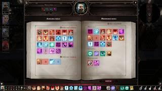 Divinity Original Sin 2 - Beast Dark Paladin Build (Necromancer / Hydrophist / Warfare)
