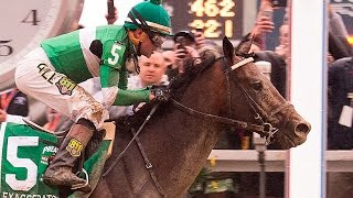 EXAGGERATOR - Preakness Stakes 2016
