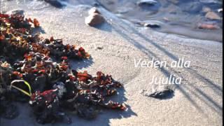 Veden alla (cover) - Juulia
