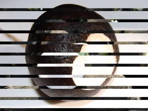 Чёрная редька лечит печень
