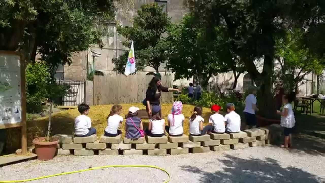 I bambini e l 39 orto sinergico giardino ss trinit vico - L orto in giardino ...
