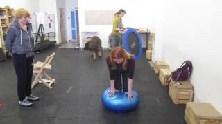 Обучение инструкторов по дог-фитнесу