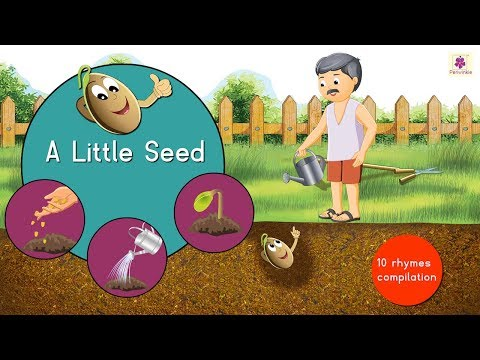 a-little-seed-and-many-more-rhymes-|-rhymes-and-songs-compilation-for-kids-|-periwinkle