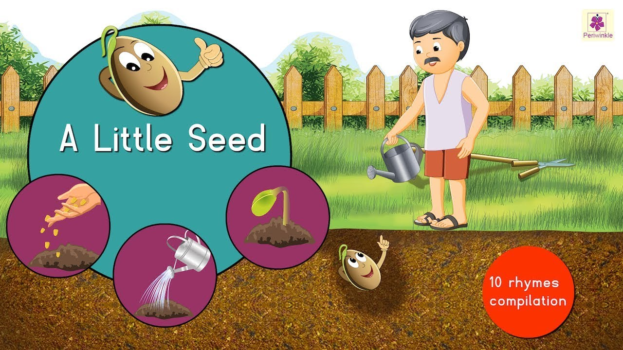 A Little Seed And Many More Rhymes Songs Compilation For Kids Periwinkle