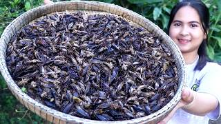 Awesome Cooking : Fried Insect Crickets Recipe - Cook & Eating Food Show