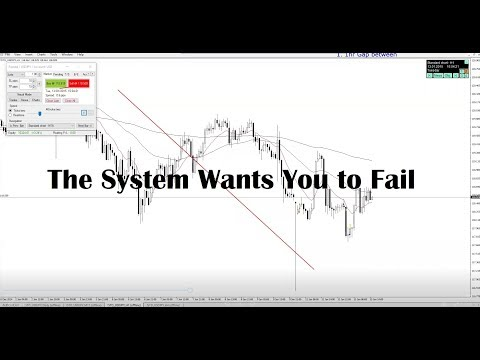 The System Wants You to Fail #19