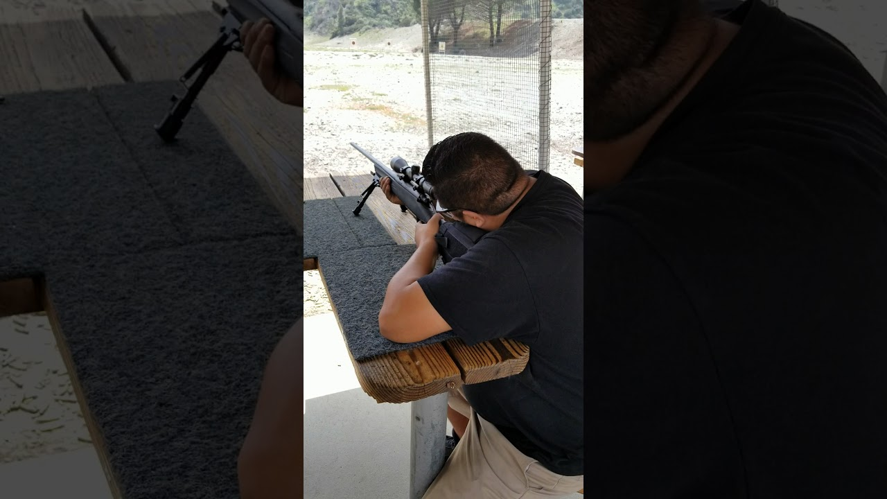 Remington 783- 300 win mag