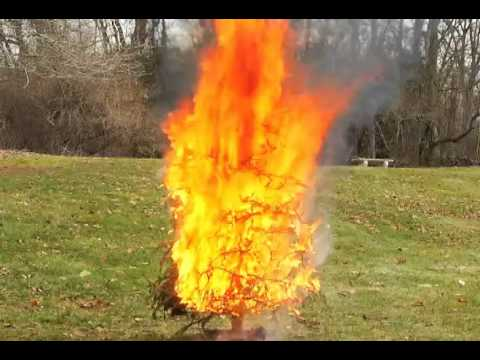 Christmas Tree On Fire Youtube