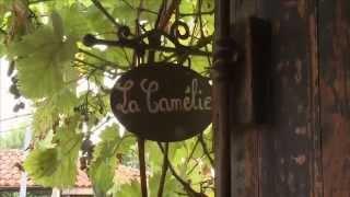Chambres d'hôtes La Camélie à Léon Gîtes de France Landes