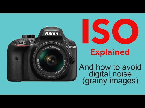 Photography tips ISO explained and how to avoid digital noise - beginners tutorial