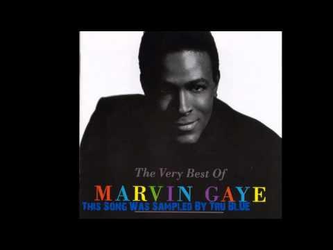Youre precious love marvin gaye
